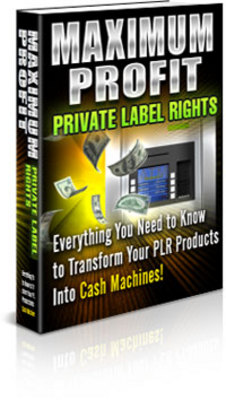 Product picture Maximum Profit PLR