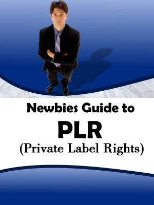 Product picture Newbie Guide to PLR